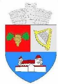 stema-valea_viilor_
